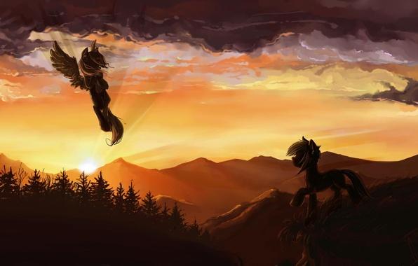 Картинка лес, закат, горы, пони, пегас, облока, My little pony