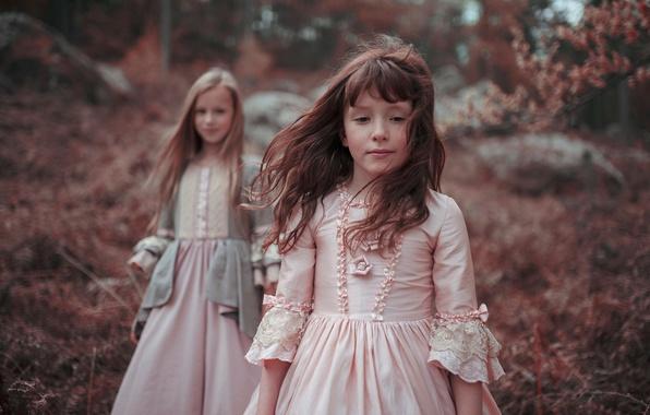 Картинка лес, волосы, девочки, платья