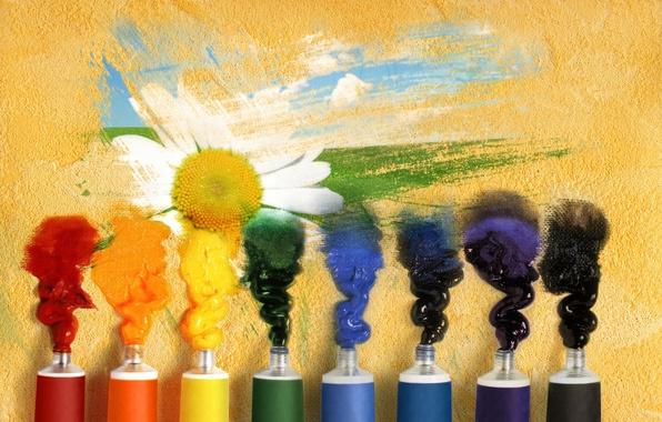 Картинка цветок, фон, обои, краски, настроения, рисунок, wallpaper, тюбики, широкоформатные, background, полноэкранные, HD wallpapers, гуашь, широкоэкранные