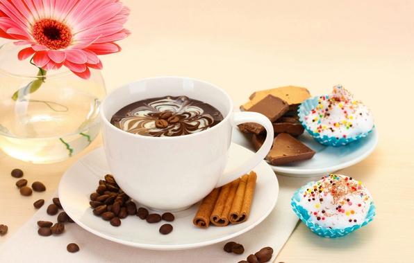Картинка цветы, кофе, еда, шоколад, чашка, торт, cake, flower, десерт, cup, chocolate, гербера, coffee, dessert, gerbera