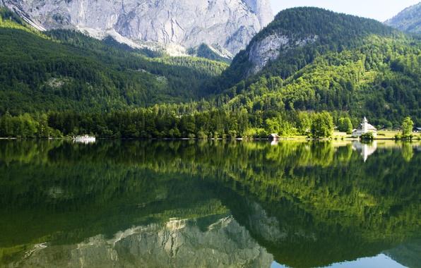 Картинка лес, деревья, горы, озеро, отражение, скалы, Австрия, Gruner