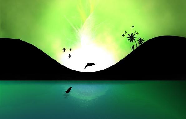 Фото обои Дельфин, энергия, вода