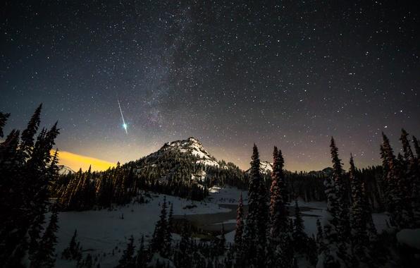 Картинка зима, лес, звезды, снег, горы, ночь, панорама, Rainier National Park