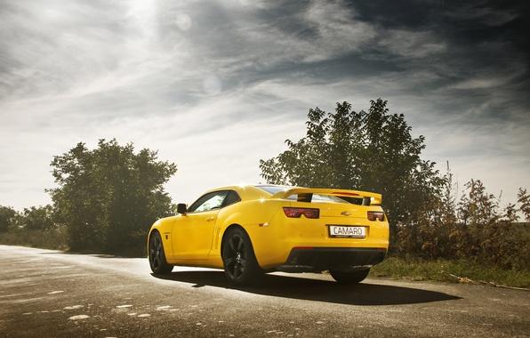 Картинка дорога, желтый, шевроле, camaro, chevrolet, muscle car, камаро