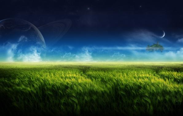 Картинка зелень, природа, луна, остров