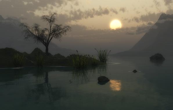 Картинка солнце, закат, горы, озеро, камыши, дерево, сумерки