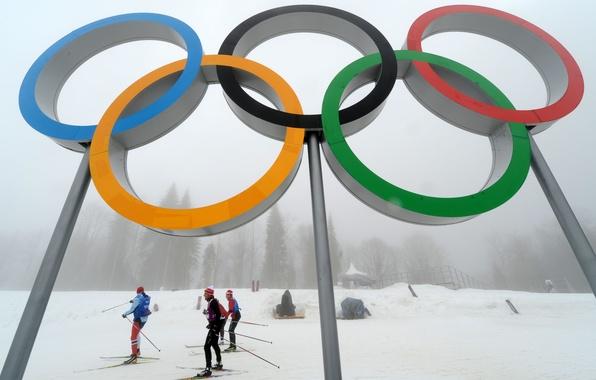 Картинка зима, лес, небо, снег, туман, снизу, лыжники, Россия, Олимпийские кольца, Сочи 2014, комлекс Лаура