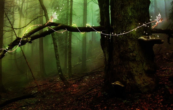 Картинка лес, дерево, эльфы