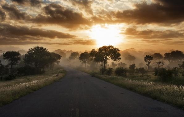 Картинка дорога, небо, природа, утро