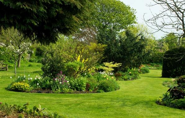 Картинка зелень, трава, деревья, цветы, скамейка, сад, Великобритания, кусты, Dutton, Bluebell Cottage Garden