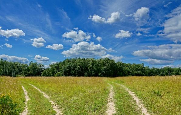 Пейзаж природа лето облака дорога