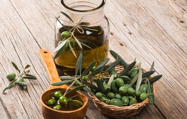 Картинка масло, оливки, листики, веточки
