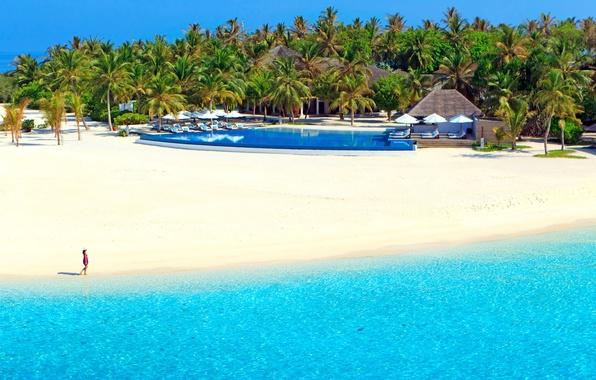 Картинка песок, море, пляж, солнце, тропики, пальмы, отдых, берег, остров, бассейн, Мальдивы, курорт, шезлонги, Velassaru