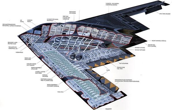 Картинка конструкция, бомбардировщик, Northrop, стратегический, малозаметный, B-2 Spirit, тяжёлый