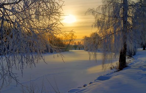 Картинка зима, иней, лес, солнце, снег, деревья, восход, поляна, утро, Швеция