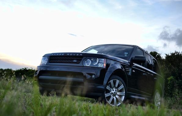 Картинка небо, трава, деревья, черный, спорт, grass, Land Rover, black, sky, front, tree, range rover sport, …