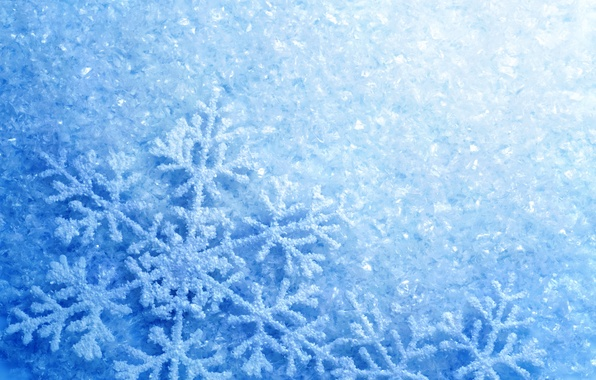Картинка холод, лед, зима, иней, снежинки, блеск, мороз