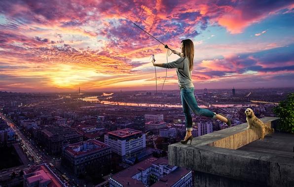 Картинка крыша, девушка, город, собака, поиск сети