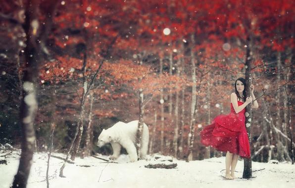Картинка зима, девушка, ситуация, медведь
