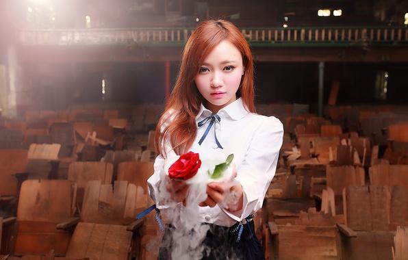 Фото обои фокус, дым, восточная девушка, роза