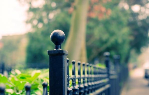Картинка листья, макро, деревья, фон, widescreen, обои, забор, размытие, ограда, ограждение, wallpaper, широкоформатные, background, полноэкранные, HD …
