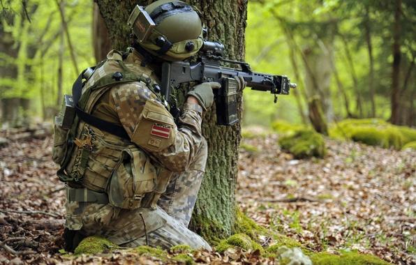 Картинка оружие, солдат, Latvian Army