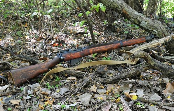 Картинка оружие, винтовка, Lee-Enfield, Ли-Энфилд