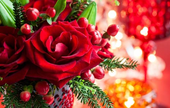 Картинка цветок, листья, цветы, ветки, розы, ель, лепестки, бутон, красные, ваза, Christmas, праздники, боке, New Year