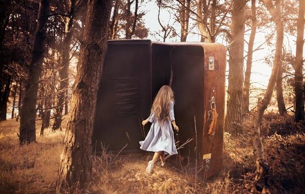 Картинка лес, девушка, чемодан