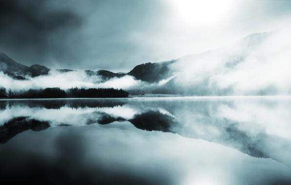 Картинка лес, горы, туман, озеро, гладь, отражение, холмы, хвойные
