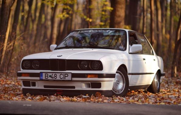 Картинка BMW, White, E30