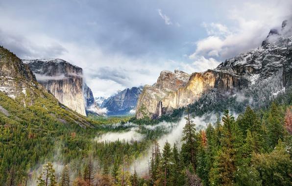 Картинка лес, горы, природа, парк, фото, США, Йосемити