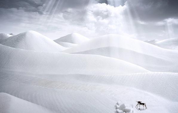 Картинка фантазия, пустыня, рисунок