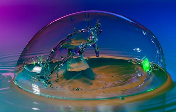 Картинка вода, макро, всплеск, блик, купол