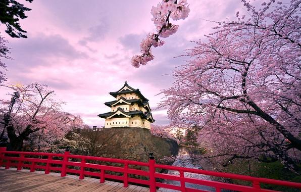Картинка небо, облака, деревья, мост, пруд, замок, Япония, сакура, цветение, Хиросаки
