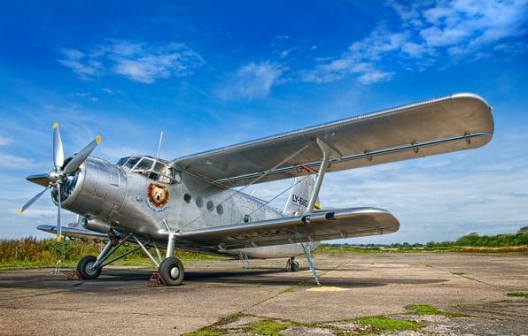 Картинка фон, самолёт, аэродром, Antonov AN-2
