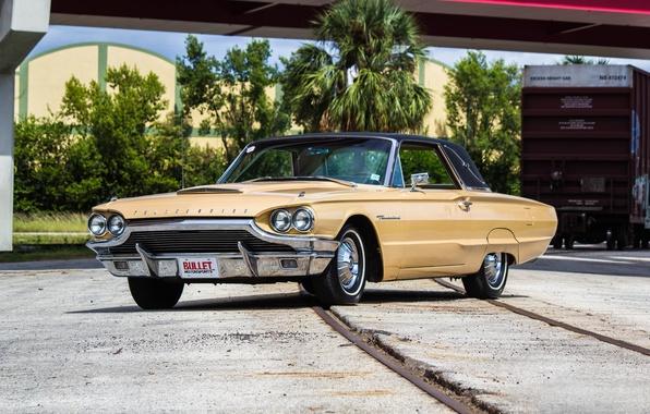 Фото обои форд, Thunderbird, тандерберд, 1964, Ford