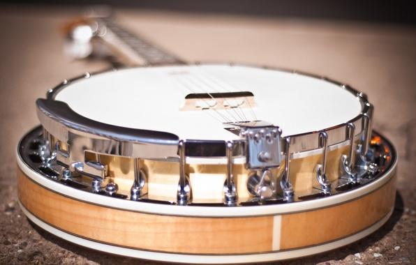 Картинка макро, музыка, инструмент, banjo