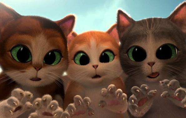 Картинка коты, мультфильм, удивление, сказка, котята, когти, зеленые глаза, cats, kittens, короткометражка, Puss in Boots: The …