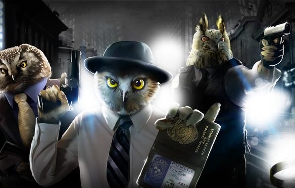 Картинка свет, птицы, ночь, город, пистолет, оружие, полиция, шляпа, арт, фонари, совы