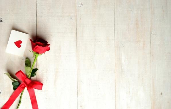 Картинка цветок, праздник, роза, лента, сердечко, бантик, открытка, День Святого Валентина