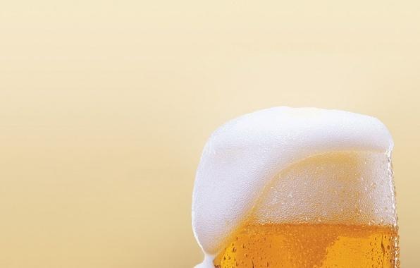 Картинка пена, капли, пиво