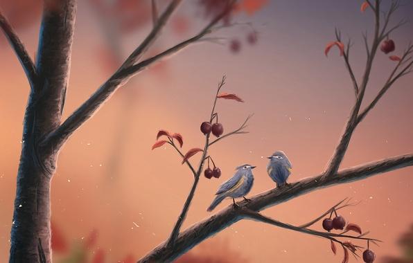 Картинка птицы, ягоды, ветка, арт