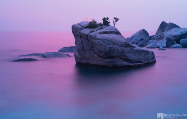 Картинка закат, скала, дерево, photographer, Bonsai Rock, Kenji Yamamura