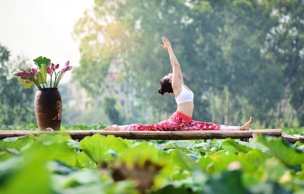 Картинка девушка, природа, гимнастика, йога, азиатка