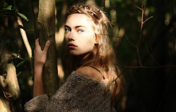 Картинка взгляд, листья, девушка, солнце, деревья, лицо, фон, испуг, widescreen, обои, настроения, ствол, wallpaper, girl, листочки, …