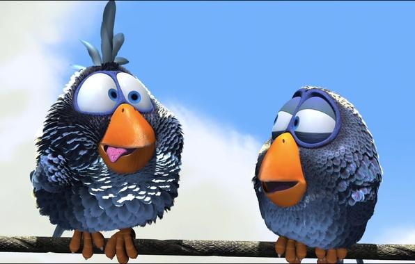 Картинка язык, птицы, птица, мультфильм, клюв, воробей, провод, птичка, Pixar, воробьи, For the Birds, О птичках