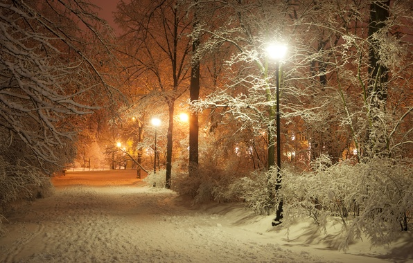 Картинка дорога, пейзаж, ночь, природа, lights, огни, фонари, фонарь, аллея, road, landscape, nature, night, полночь, lamp, …