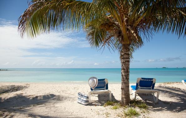Картинка песок, море, пляж, лето, пальмы, отдых, summer, beach, sun, vacation, accessories