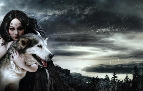 Картинка взгляд, девушка, снег, лицо, животное, волосы, волк, макияж, платье, арт, королева, Моргана